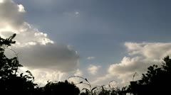 Clouds Sky Time Lapse Vines - stock footage