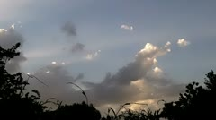 Clouds Sky Time Lapse Vines Two - stock footage