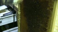 Beekeeping, Stock Footage