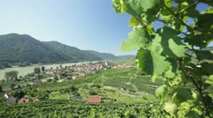 Austrian vineyards and danube Stock Footage