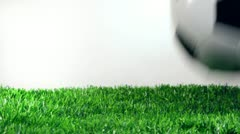 Soccer ball in motion on the green grass. Stock Footage
