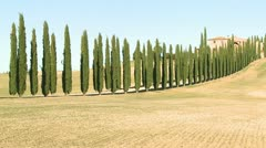 A wide shot of a farm villa with long rows of trees in Tuscany, Italy. Stock Footage