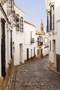 Cobblestone alley of quaint village Stock Photos