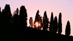 The sun sets behind a beautiful row of trees in Tuscany, Italy. Stock Footage