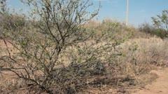 Camera tower at border (HD) C Stock Footage