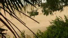 Buggy in Desert Stock Footage