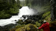 A tourist hiking through the rainforest to Cascade Creek waterfall in Thomas Stock Footage
