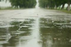 Rainy Season Stock Footage