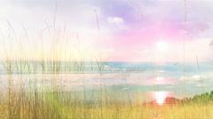 Beach & Tall Grass #4 Stock Footage