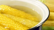 Corn Cob Boiling in a Pot Stock Footage