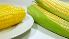 DOLLY: Boiled Corn Cob - stock footage