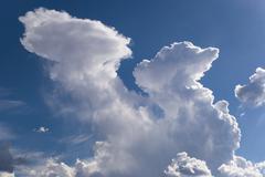 Dragon Shaped Cloud Stock Photos