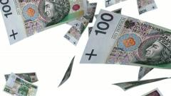 Falling Polish Zlotys (Loop on White) Stock Footage