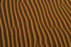 Vibrant Sand Dune Background Stock Photos