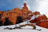 Stock Photo of Bryce Canyon Snow Scenic