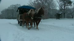 Luneburgerheide, covered wagon in winter - stock footage