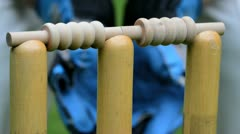 Wicket with wicket keeper Stock Footage