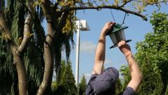 Taking Down Bird Feeder Stock Footage