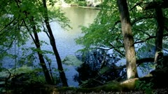 Landscape with river - stock footage