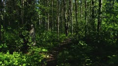 Walking through Forest Path by River in Alaska - stock footage