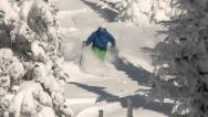 Brightly dressed skier skis powder in treed chute Stock Footage