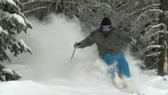 Cold dry powder snow blows up as skier charges through trees Stock Footage