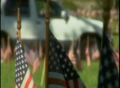 Stock Video Footage of American flags adorn a cemetery,