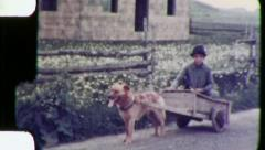 Gypsy Boy Romani Italy DOG CART Pet 1930s Vintage Film Home Movie 3042 Stock Footage