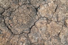 Dried mud Stock Illustration