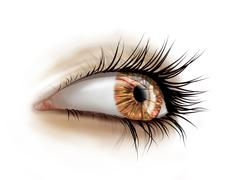 Close up of eye with long lashes Stock Illustration