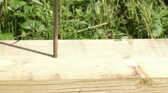 Nail in a board. Stock Footage