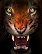 Fierce tiger Stock Illustration