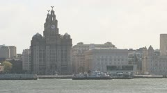 The Liver Building Stock Footage