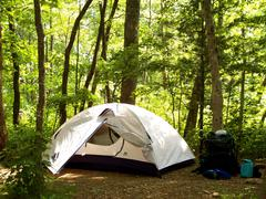 Backpacking Tent in Appalachian Forest.JPG Stock Photos