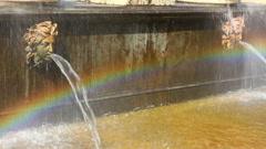 Lion cascade fountain fragment in petergof park St. Petersburg Russia Stock Footage