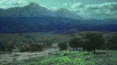 Timelapse California Poppy Field Stock Footage