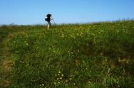 Lone Hiker atop Appalachian Mountain grassy bald.JPG Stock Photos