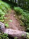 Appalachian Trail & Logo on log.JPG Stock Photos