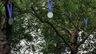 Stock Video Footage of Olympic Gold Medals Hanging From Tree - Leicester Square - London, UK - HD