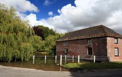 the village pond - stock photo