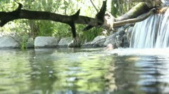 Creek underwater shot - stock footage