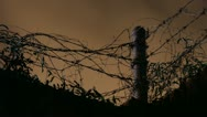 Timelapse barbed wire Stock Footage
