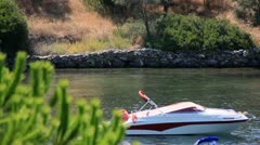 SpeedBoat with Fern Tree in Foreground Stock Footage