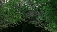 Timelapse autumn river Stock Footage