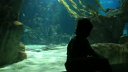 Aquarium Stock Footage