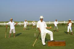 Multi-ethnic friends playing croquet Stock Photos