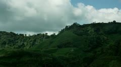 Timelapse padi hills Stock Footage