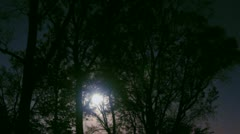 Timelapse moon rise - stock footage