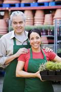 Hispanic couple working at garden center Stock Photos