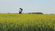 Stock Video Footage of Oil Pump On Canadian Farm